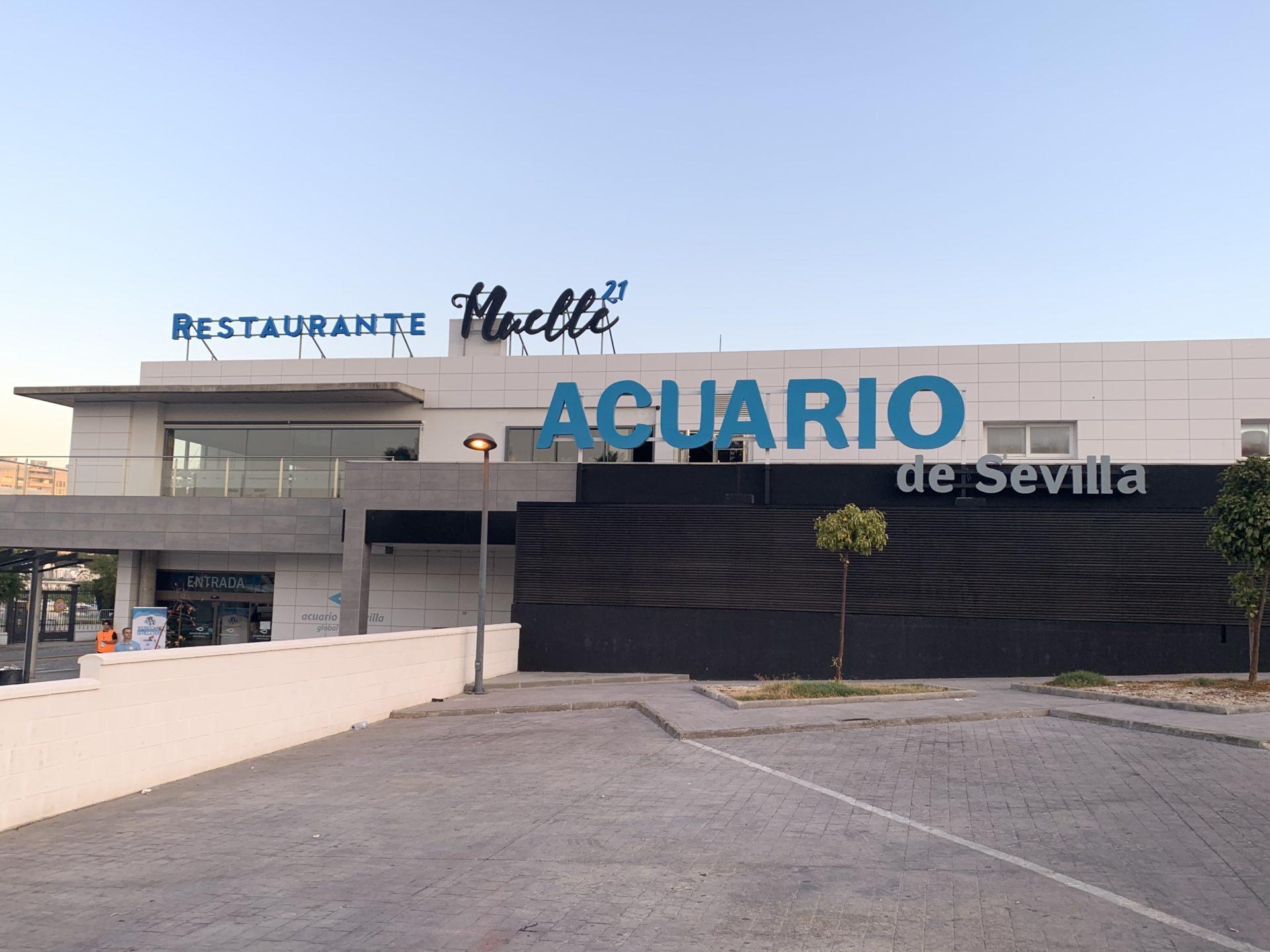 wcsevilla acuario